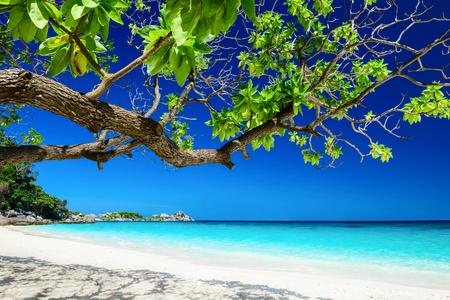 paisaje tropical de las islas Similan, Tailandia