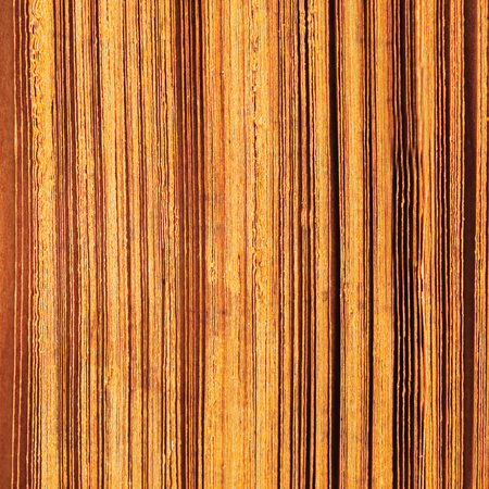 papery: Striped background paper. Book page Stock Photo