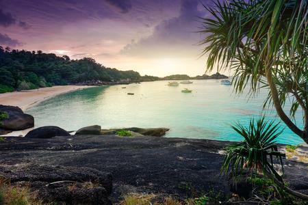 similan: Tropical landscape. Similan islands, Thailand Stock Photo