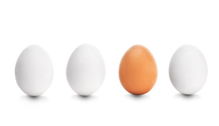 unique: Four chicken egg on white background