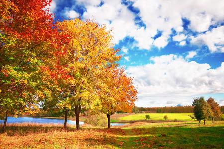 jezior: krajobraz jesień