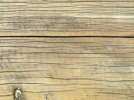 Texture of an old and white colored oak wood Stock Photo