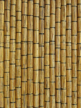 Wall of reed mats. Detail of a traditional building in Barra. Inhambane, Mozambique, Southern Africa