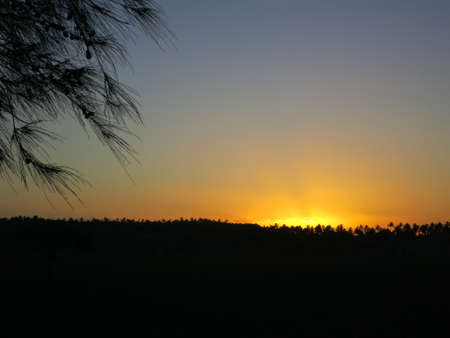 Sunset with a view of a palm forest in Tofo. Inhambane, Mozambique, Southern Africa Stock Photo