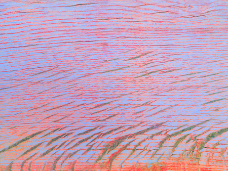 Pink and bright blue colored oak wood texture