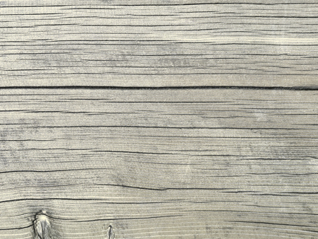 Grey colored oak wood texture