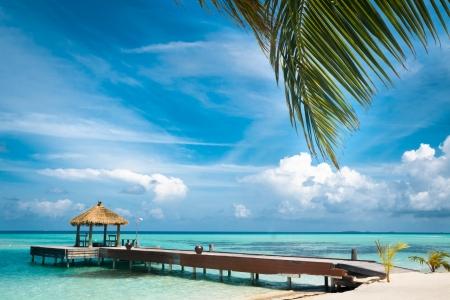 熱帯の島、旅行バック グラウンドでモルディブの家