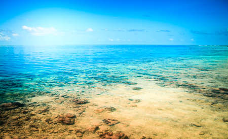 Tropical resort beach. Summer background. Maldives shot photo