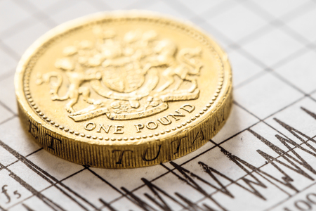 Pound coin the British currency. Studio shot