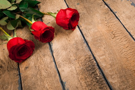 valentines day three red roses Stock Photo
