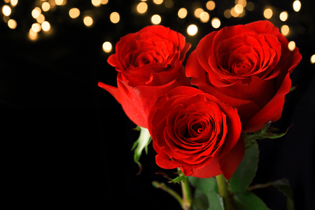 Three red roses on dark background. Valentines Day concept Banco de Imagens