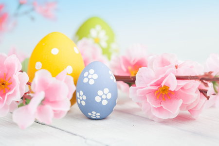 Spring flowers and colorful easter eggs on a blue Stock Photo