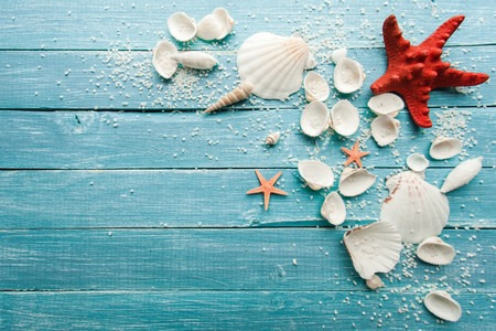 Summer sea background - shells and star