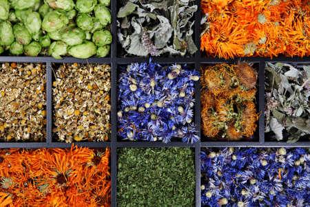meta: Variety of drying herbs