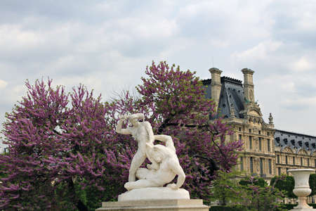 Tuileries garden in Paris, France  photo