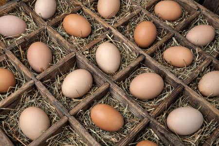 huevos de codorniz: Huevos de gallina frescos en una caja de madera de la vendimia.