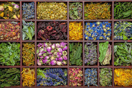 Assortment of dry herbs tea in a wooden box. Stock Photo