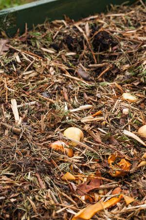 composting: Composting Stock Photo