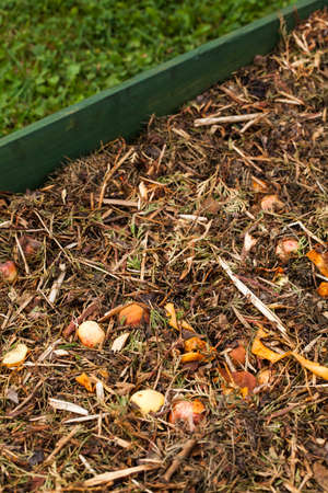 fertile land: Composting Stock Photo