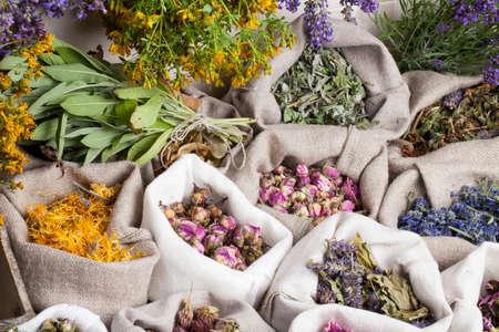 catnip: Healing medical herbs in a linen sacks.