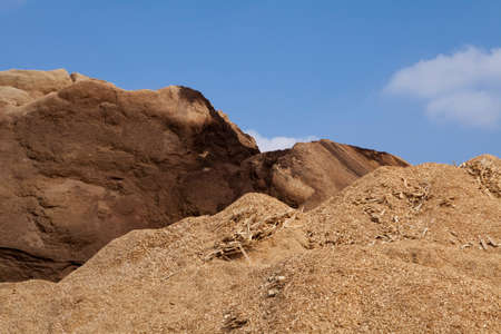 scobs: Pile of wood chips and sawdust used for biofuel manufacturing