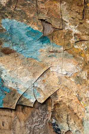 crannied: Abstract oil painted crannied background texture