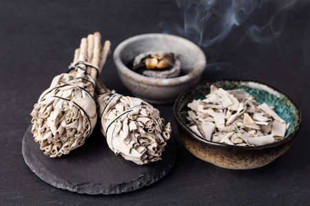 shamanism: Incense of Salvia Apiana  (White sage, sacred sage, bee sage, california sage)