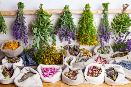 officinalis: Healing medical herbs in a linen sacks.