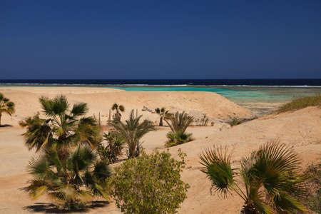 Marine landscape of  Marsa Alam (Red Sea), Egypt