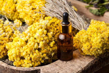 Dwarf everlast (Helichrysum arenarium) flowers and aroma oil