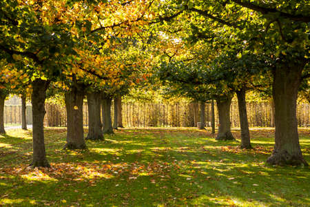 Herrenhausen Gardens in Hannover (Herrenhäuser Gärten)