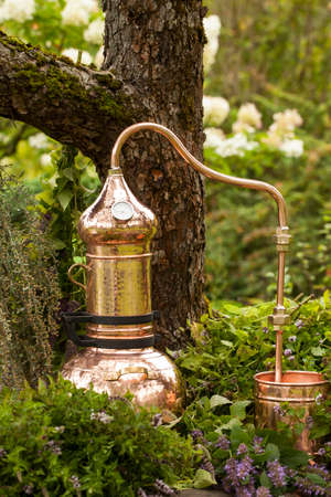 Alembic is a distilling apparatus of Arabic origin which may be used to distill essential oils and a variety of alcoholic beverages. Banque d'images