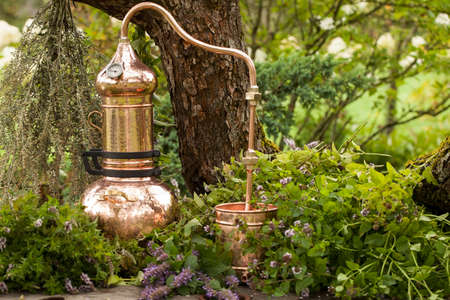Alembic is a distilling apparatus of Arabic origin which may be used to distill essential oils and a variety of alcoholic beverages. 免版税图像
