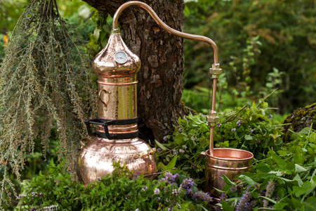 Alembic is a distilling apparatus of Arabic origin which may be used to distill essential oils and a variety of alcoholic beverages. Standard-Bild