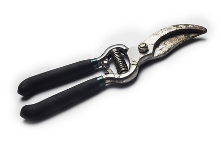 snipping: garden secateurs on a white background