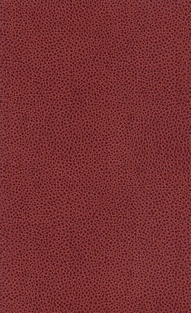 Dimpled Book Texture Stock Photo - 3320811