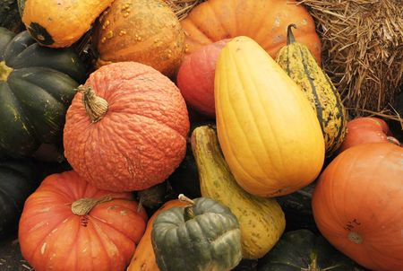 Display of fall pumpkins and gourds