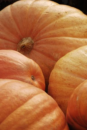Pumpkins on display at market Stock Photo