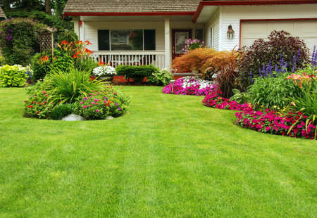 home garden: Manicured Yard