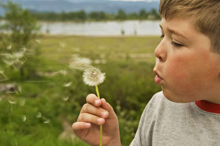 A carefree boy blowing on a dandelion during a summer day.