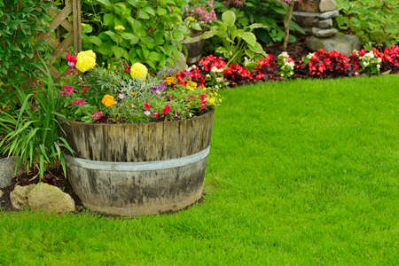 manicured: A garden flower arrangement full of annuals and perennials. Stock Photo