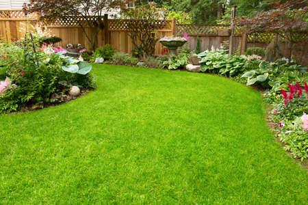 bark mulch: Residential garden transitioning spring to summer.
