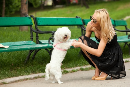 young fashion woman in the park, playing with her dog photo