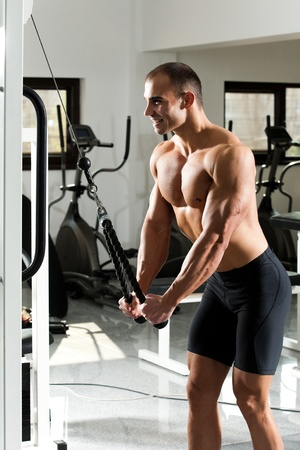 triceps: young bodybuilder trining in the gym - cable rope triceps extension