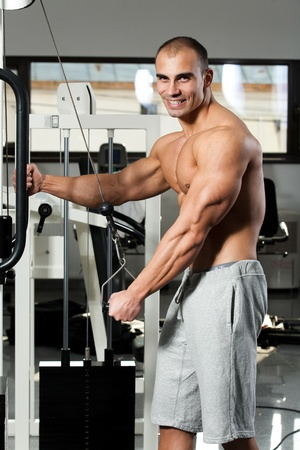 triceps: young bodybuilder training in the gym - cable rope triceps extension