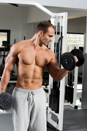 alternate: young bodybuilder training in the gym - dumbbell alternate biceps curl