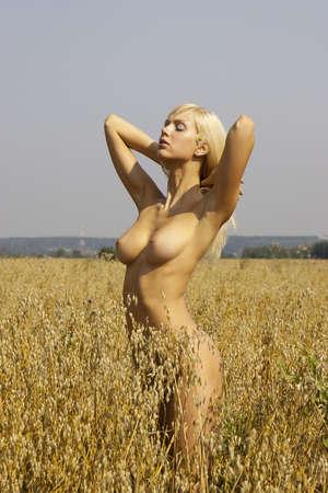 tetas: Chica desnuda con pechos bronceados agradables en el campo de la avena Foto de archivo