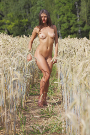 nude babe: Nude in the Rye. A young babe on the field. Stock Photo