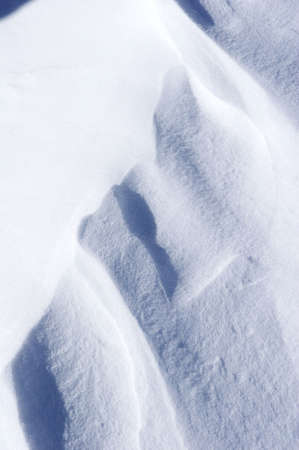 fresh powder snow photo