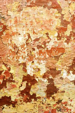 faded peeling paint on wall photo